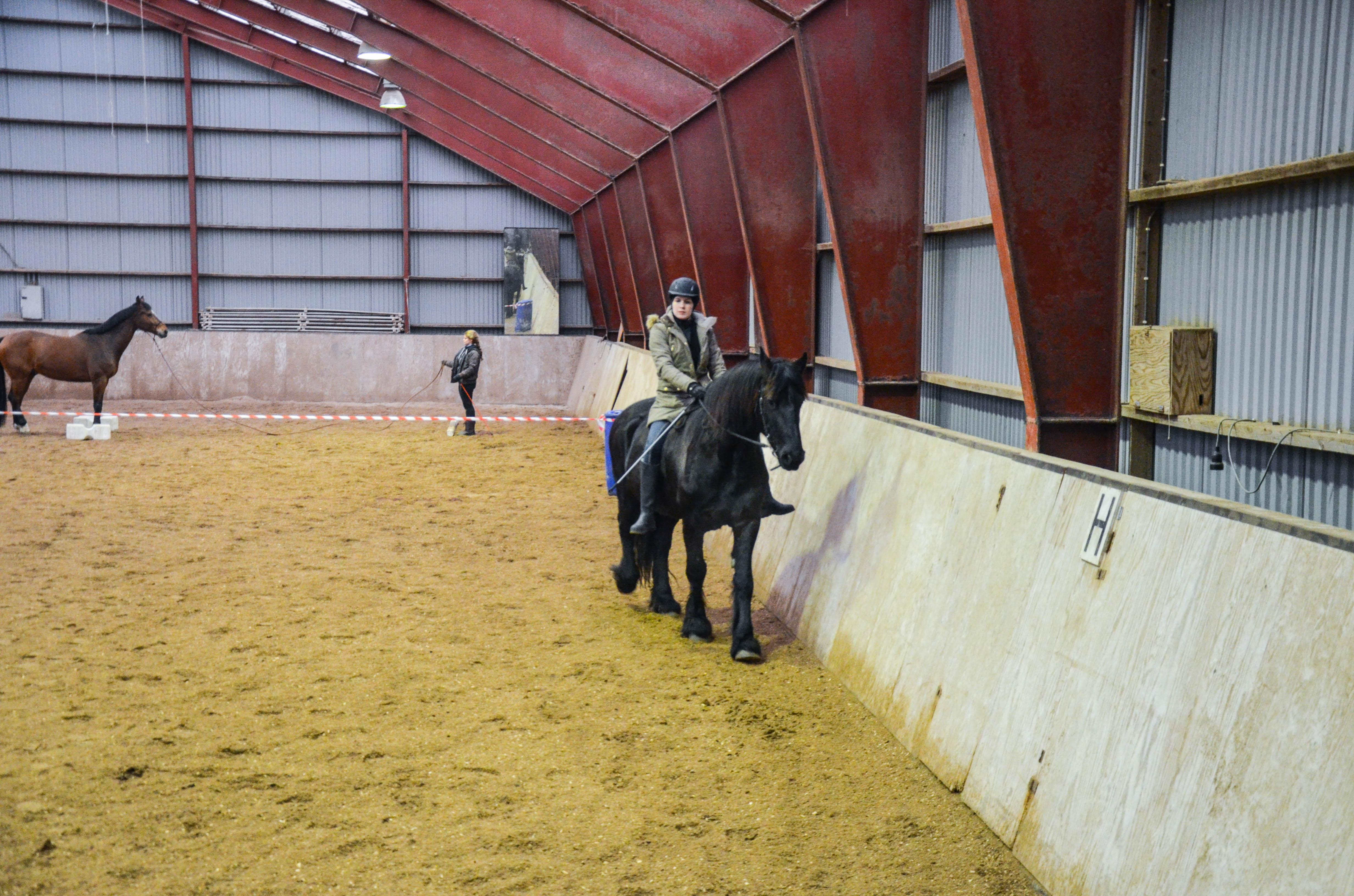 Relax rein bestod av å tippe nesen bittelitt til utsiden, til hesten ønsker å strekke seg, og så gi han hele tøylen.