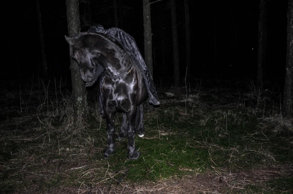DarkForestShoot-26