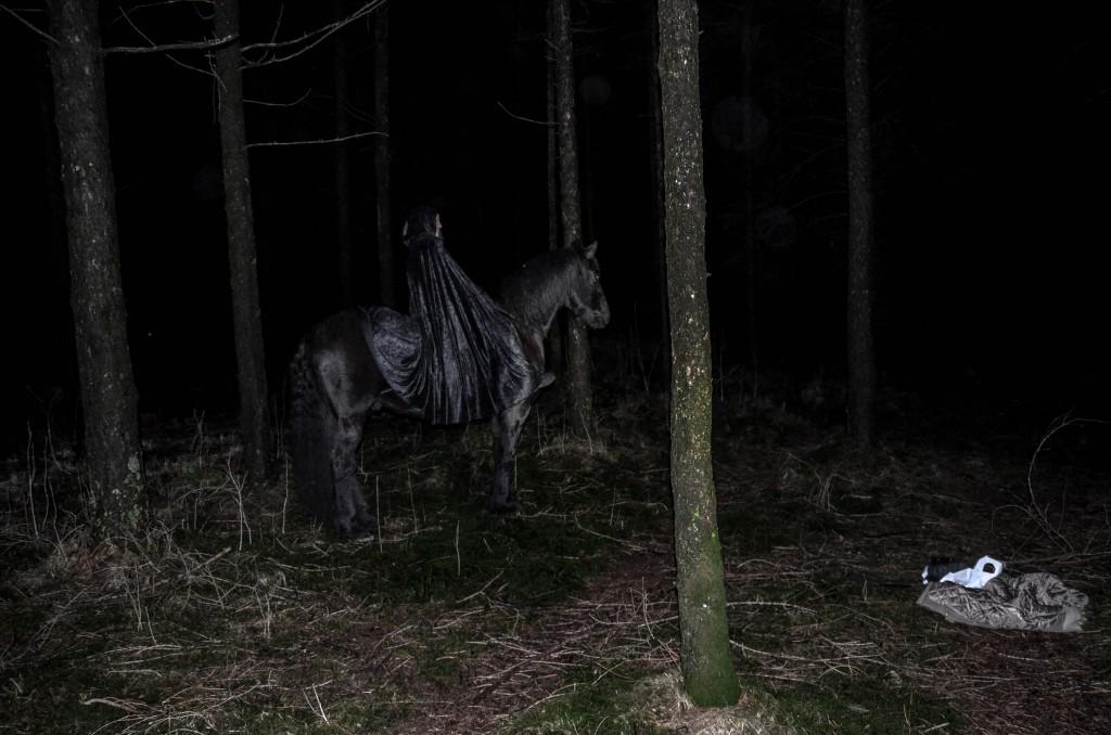DarkForestShoot-49