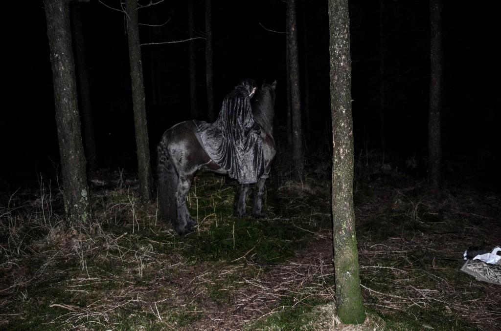 DarkForestShoot-51