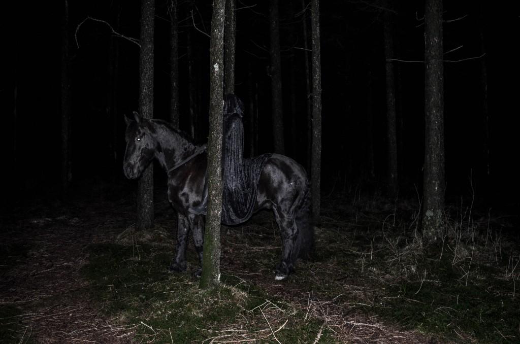 DarkForestShoot-58